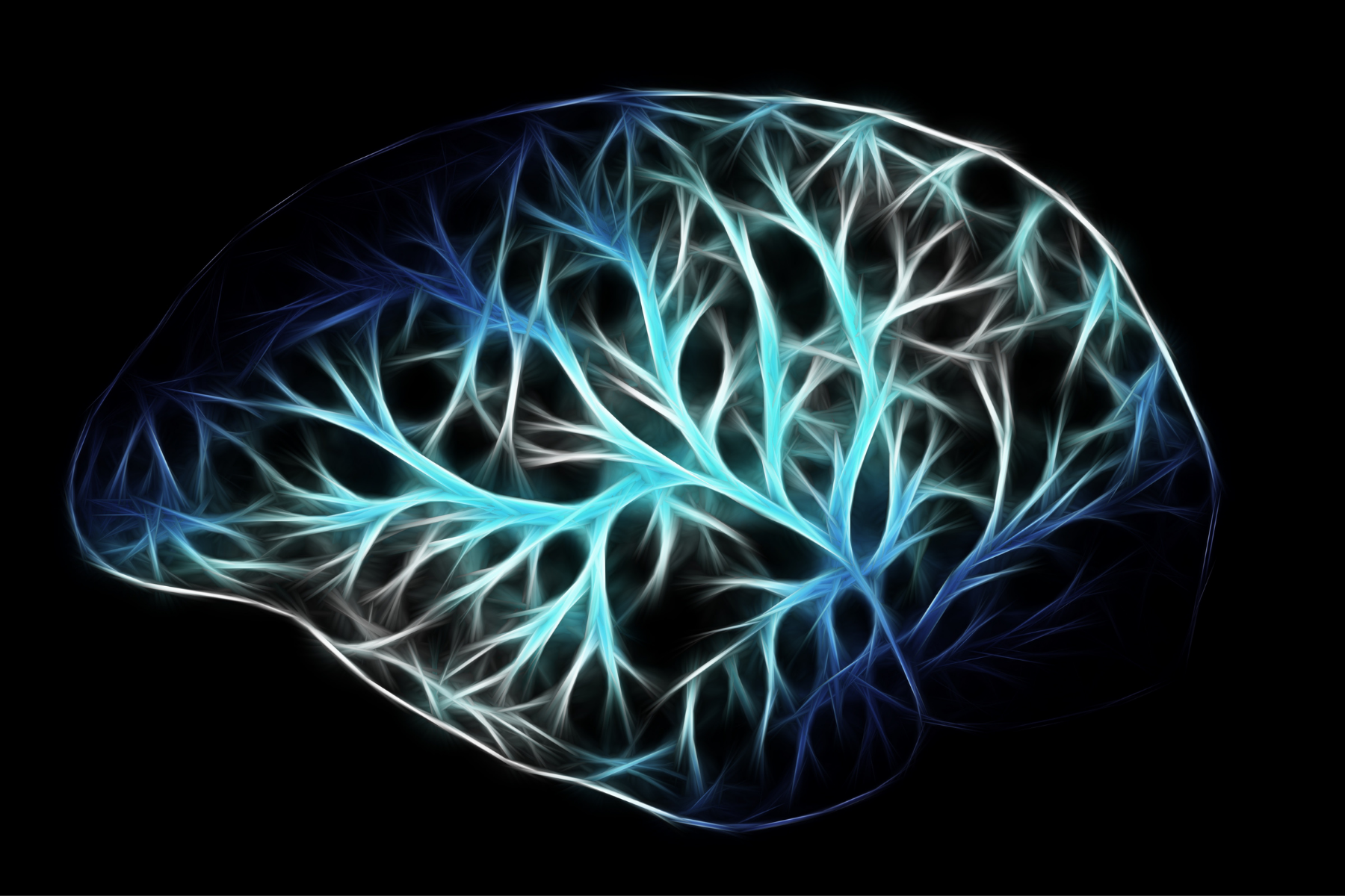 Brain training for disability